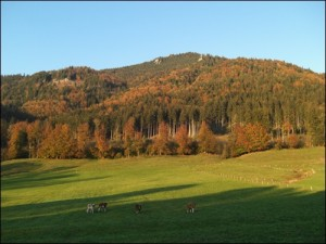 Herbst in Lenggries