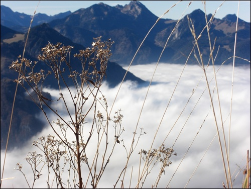 Bergauf, bergab (2)