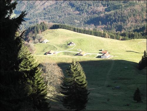 Almen am Heuberg im Chiemgau