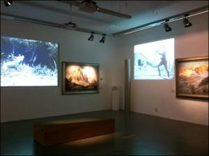 Alpenvereins Museum Innsbruck