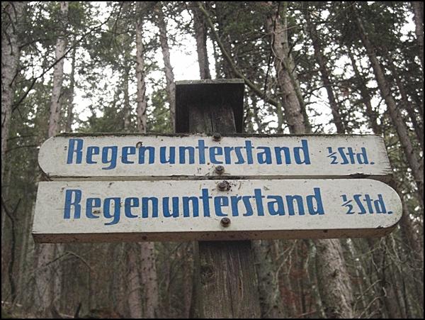 Wanderung am Kofel in den Ammergauer Alpen