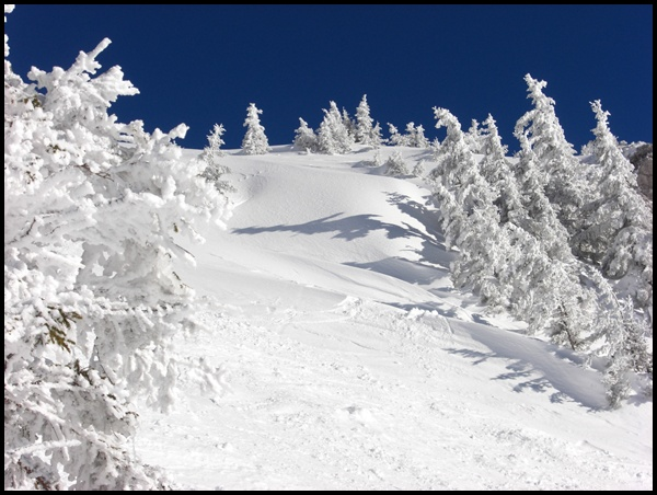 Winterwanderungen in Bayern und Tirol
