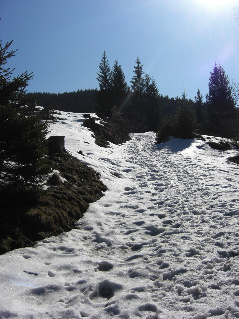 Gipfelbuch: Winterwanderung aufs Hörnle
