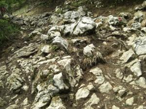 Weg zum Spitzstein Gipfel