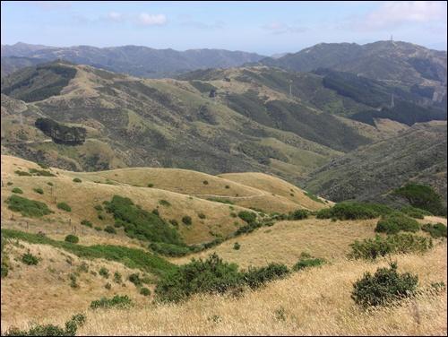 Die schönsten Wanderungen in Neuseeland (1)