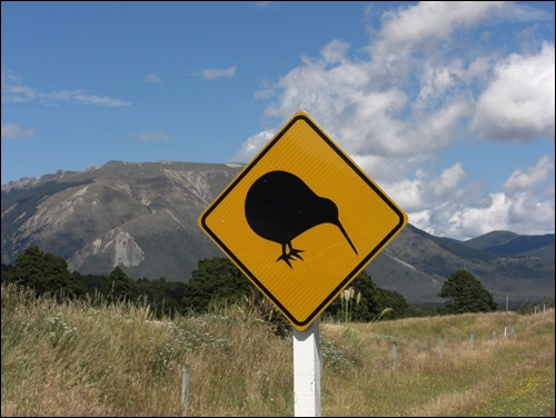 Kiwi Verkehrsschild