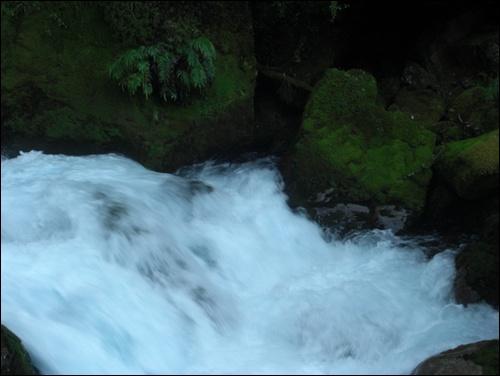 Fiordland Neuseeland