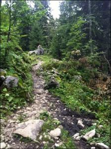Wanderweg Bodenschneid