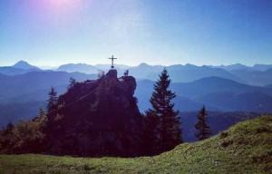 Gipfelsteinbock