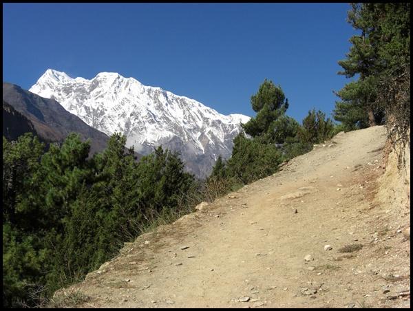 Weg nach Ghyaru Nepal