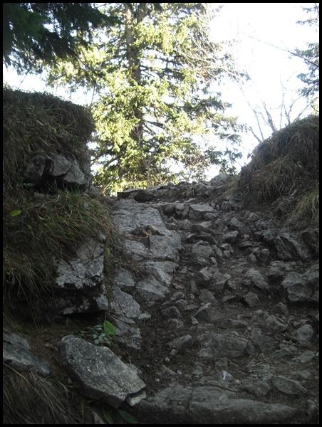 Wanderweg Hochries