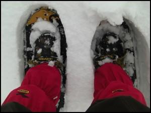 Gipfelglück mit Schneeschuhen