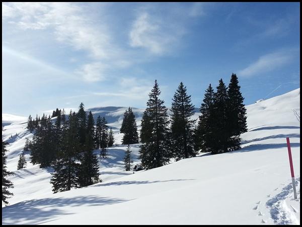 Winter-Kurztrip Interlaken: Schneeschuh-Wanderung Lombachalp