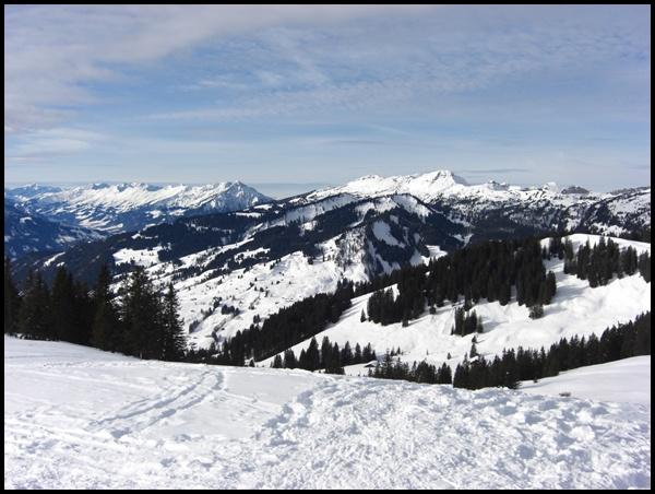 Schweizer Berge Lombachalp