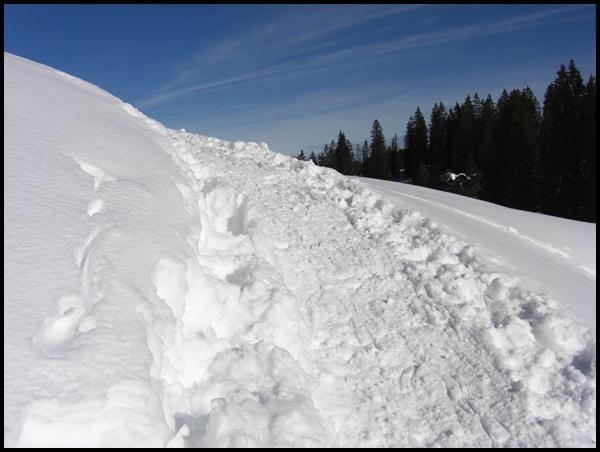 Schneeschuhwandern Schweiz