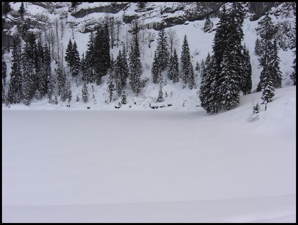 Hinterburgseeli Winterwanderung Axalp