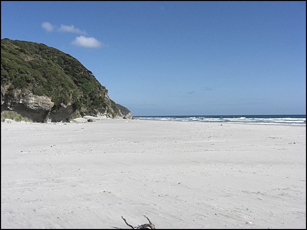 Strand in der Golden Bay Neuseeland