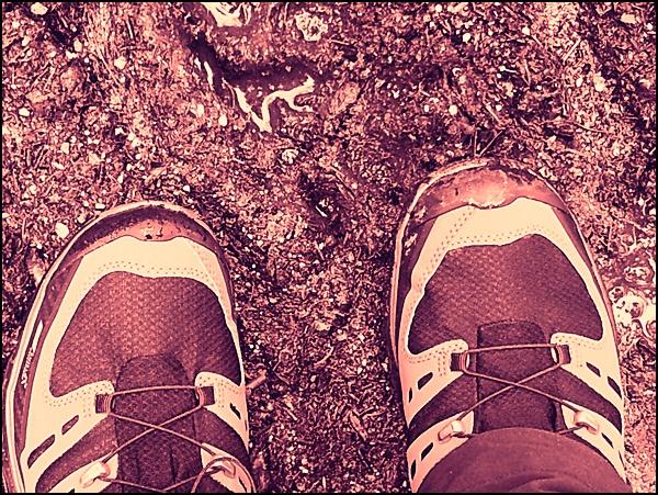Schuhtest