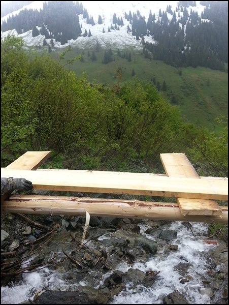 Brücke für Wanderer am Almrosenweg