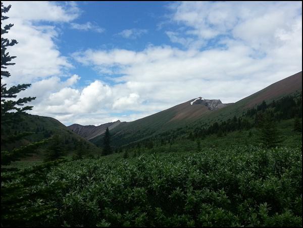 Opal Hills Jasper National Park