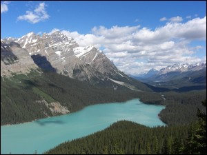 Peyto Lake am Icefields Parkway Alberta