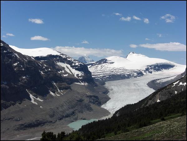 Saskatchewan Gletscher Alberta