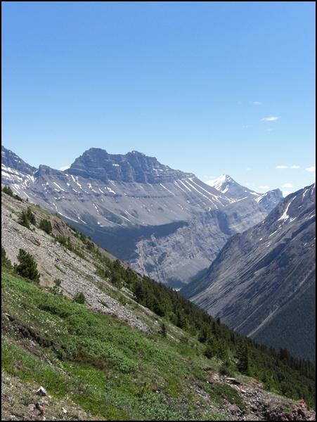 Parker Ridge Wanderung in Alberta