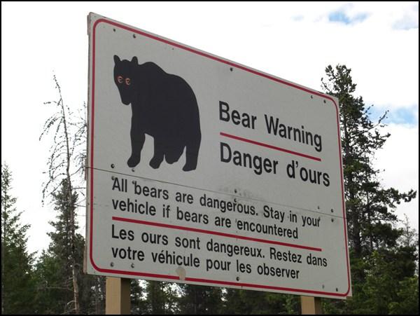 Bären Warnung an der Straße zum Maligne Lake Alberta