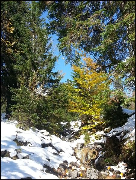 Winter und Herbst im Estergebirge