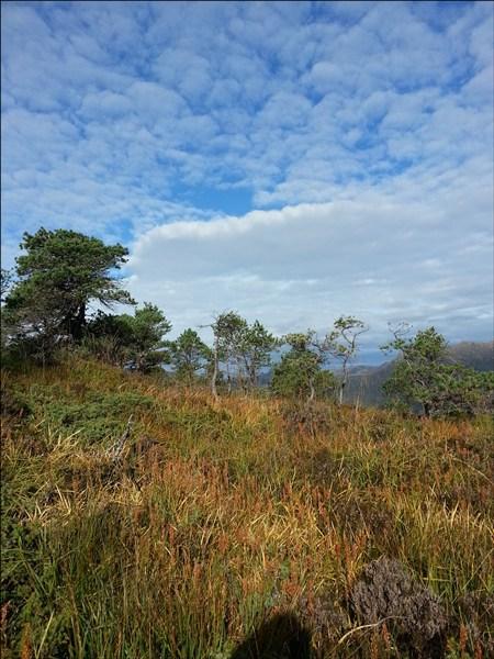 wandern bei Floro in Norwegen