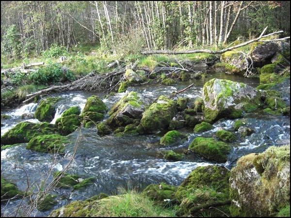Fossestien Wanderweg Norwegen