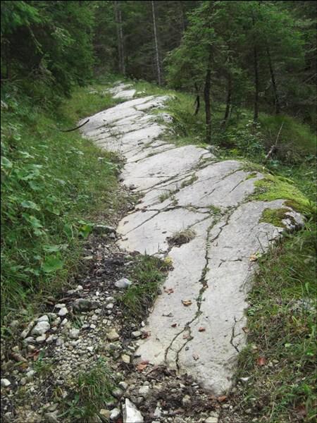 Wanderpfad zum Schafreuter