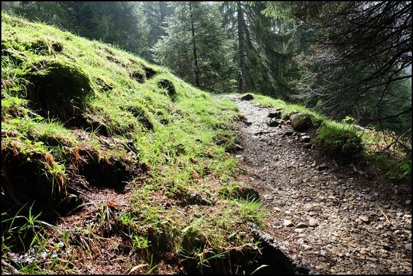 Reisetipps für die Ammergauer Alpen (Bayern)