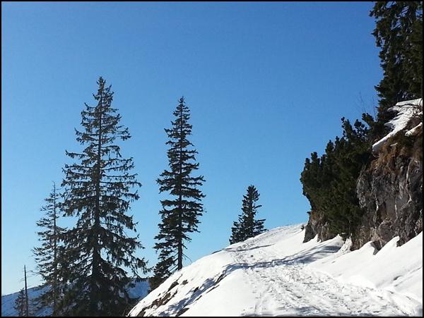 Winterwanderung Rauschberg