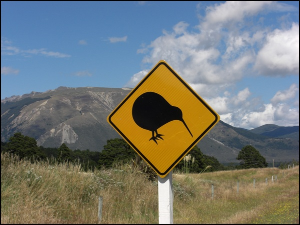 Neuseeland Wanderurlaub mit Kiwi