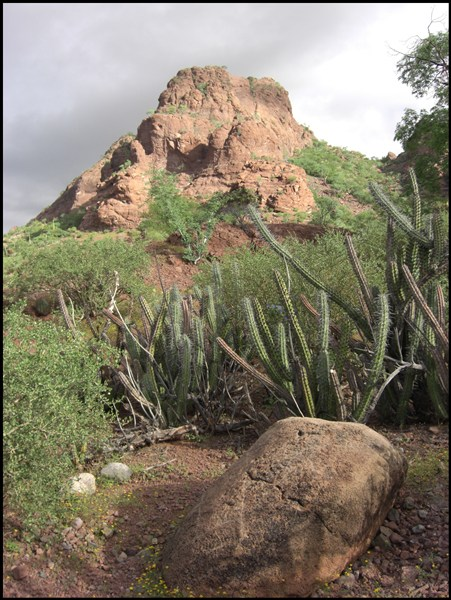 Wüste Baja California