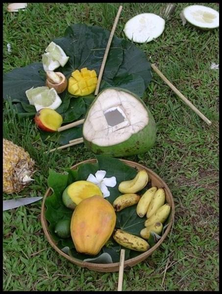 Kokosnuss Picknick Südpazifik