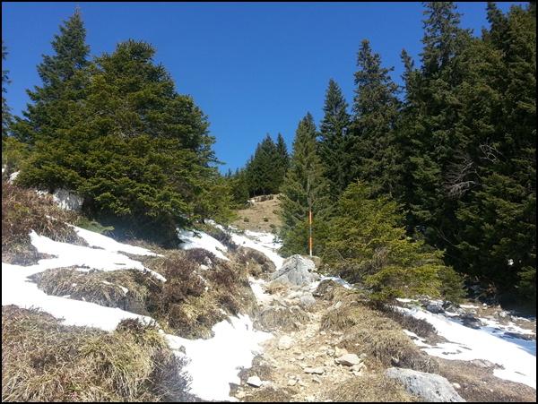 Wanderweg zum Wildalpjoch in den Bayerischen Alpen