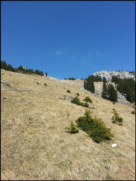 Abstieg vom Wildalpjoch