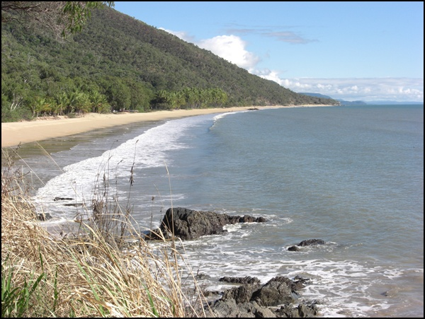 Daintree National Park Australien