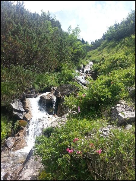 Lechtaler Alpen Bergbach