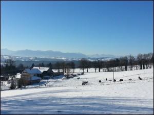 Hohenpeissenberg im Schnee