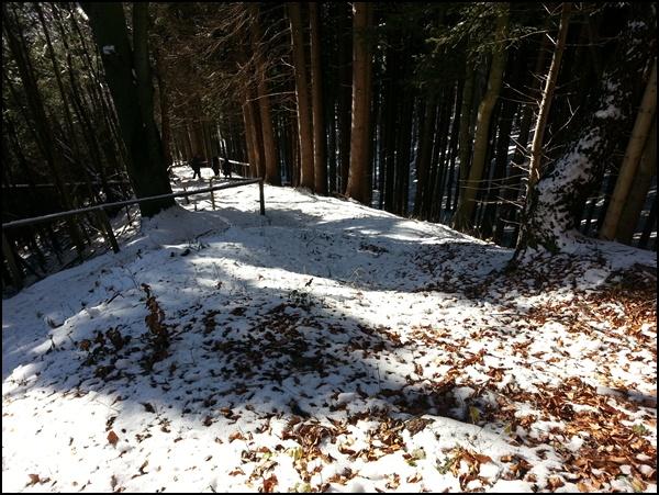Abstieg nach Hohenpeißenberg