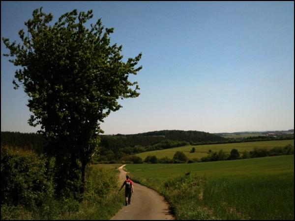 Virtuell Wandern (12) – Mit Wibke durch die Eifel
