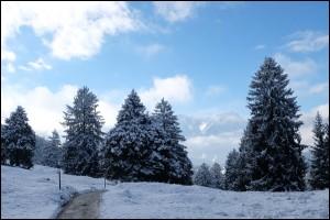 Winterwanderung nach Garmisch-Partenkirchen