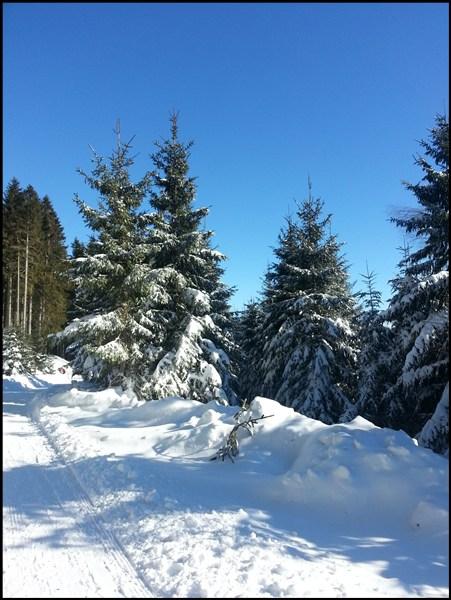 Schneewanderung Blomberg bei Bad Tölz