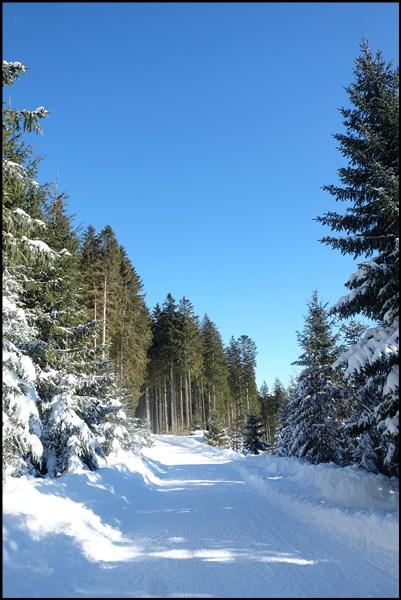 Wanderweg zum Blomberg