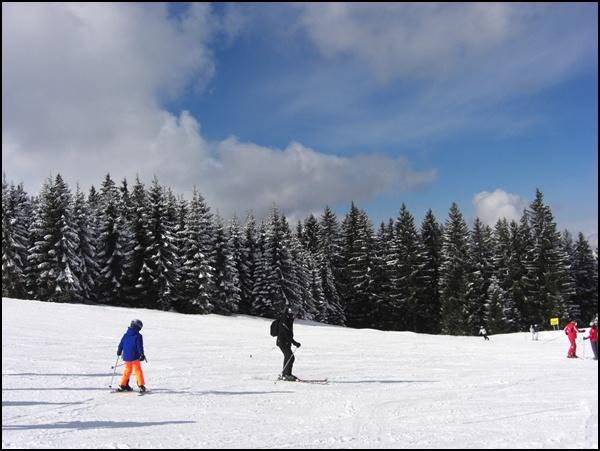 Projekt Pistenglück 2/2015: Skigebiet Winklmoosalm und Steinplatte
