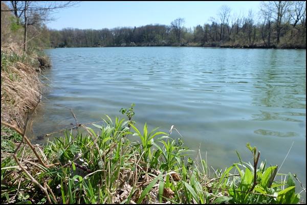 Unterföhringer See