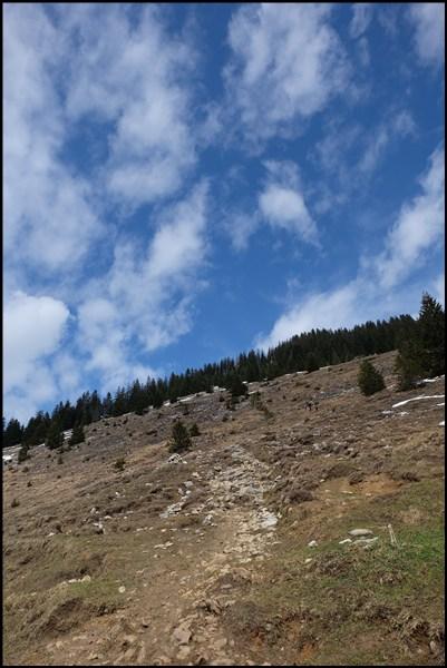 Zwischen Altkaseralm und Spitzstein-Gipfel